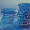 Каким должен быть начальный депозит трейдера?